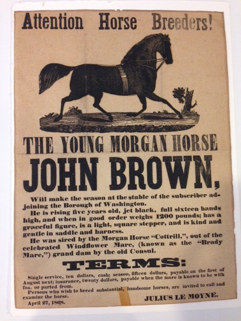 "ATTENTION HORSE BREEDERS! / (6 x 8 in image of horse) / THE YOUNG MORGAN HORSE / JOHN BROWN, / Will make the season at the stable of the subscriber ad- / joining the Borough of Washington. / He is rising five years old, jet black, full sixteen hands / high, and when in good order weighs 1200 pounds; has a / graceful figure, is a light, square stepper, and is kind and / gentle in the saddle and harness. / He was sired by the Morgan Horse ""Cotrill,"", out of the / celebrated Windflower Mare, (known as the ""Brady / Mare,"") grand dam by the old Consul. / TERMS: / Single service, ten dollars, cash; season fifteen dollars, payable on the first of / August next; insurance, twenty dollars, payable when the mare is known to be with / foal or parted from. / persons who wish to breed substantial, handsome horses, are invited to call and / examine the horse."