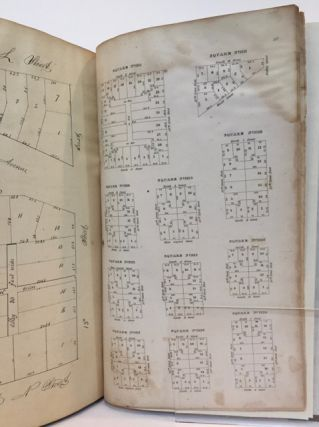Maps of the District of Columbia and City of Washington, and Plats of the Squares and Lots of the City of Washington.; Printed in pursuance of a resolution of the Senate of the United States.