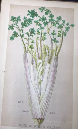 HOW TO CULTIVATE AND PRESERVE CELERY. Roessle's Gardner's Hand-Books. No.1. [All?]; Edited, with a preface, by Henry S. Olcott.